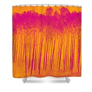 Pink Aspen Trees Shower Curtain