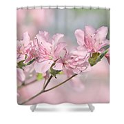 Pink Azalea Flowers In The Spring Shower Curtain