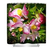 Pink Begonia Shower Curtain