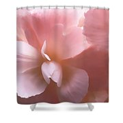 Pink Begonia Floral Shower Curtain