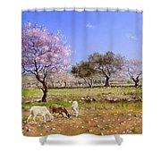 Pink Blossom Shower Curtain