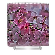 Pink Blossoms - Paint Shower Curtain