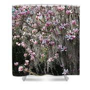Pink Blossoms And Gray Moss Shower Curtain