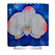 Pink Blush Orchid Shower Curtain
