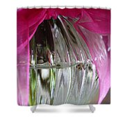 Pink Bowed Glass Shower Curtain