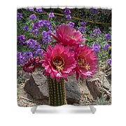 Pink Cactus Torch Shower Curtain
