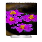 Pink Candle Shower Curtain