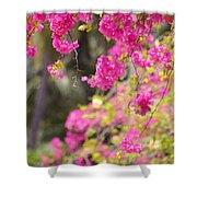 Pink Cascade Of Bougainvillea. Vertical Shower Curtain