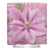 Pink Clematis Profusion Shower Curtain