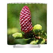Pink Cone Shower Curtain