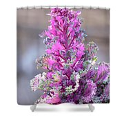 Pink Coned Cabbage Shower Curtain