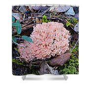 Pink Coral Shower Curtain
