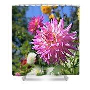 Pink Dahlia Flower Closeup Shower Curtain