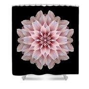 Pink Dahlia Flower Mandala Shower Curtain by David J Bookbinder