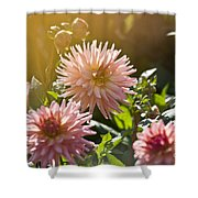 Pink Dahlia Garden Shower Curtain