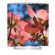 Transparent Glory Pink Dogwood Easter Flower Art Shower Curtain