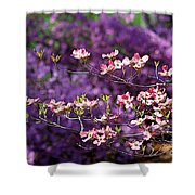 Pink Dogwood With Purple Azaleas Shower Curtain