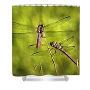Pink Dragonflies Shower Curtain