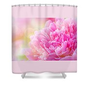 Pink Dream Shower Curtain