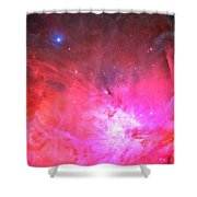 Pink Dreams Shower Curtain by Phill Petrovic