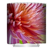 Pink Energy Shower Curtain