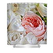 Pink English Rose Among White Roses Art Prints Shower Curtain