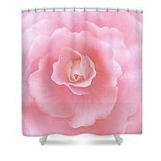 Pink Fantasy Begonia Flower Shower Curtain