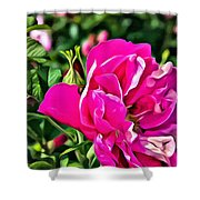 Pink Floral Shower Curtain