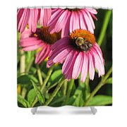 Pink Flower And Bee Shower Curtain
