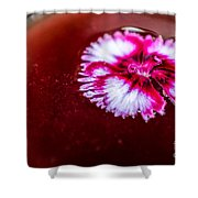 Pink Flower In Red Wine Cocktail Shower Curtain
