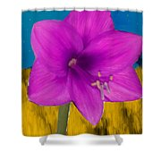 Pink Flower On A Fall Evening Shower Curtain