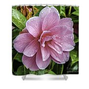 Pink Flower With Rain Drops Shower Curtain