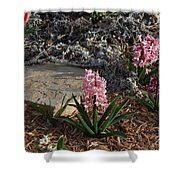 Pink Flower's With A Lime Stone Rock Shower Curtain