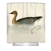 Pink Footed Goose Shower Curtain