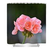Pink Geranium Shower Curtain