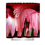 Pink Gladiolas Abstract Shower Curtain
