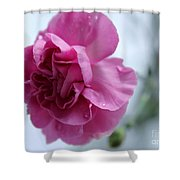 Pink Grace Shower Curtain