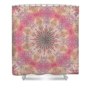 Pink Healing Mandala Shower Curtain
