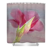 Pink Hibiscus Flower Shower Curtain