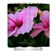 Pink Hibiscus II Shower Curtain