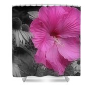 Pink Hibiscus In Partial Color Shower Curtain