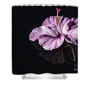 Pink Hibiscus On Black Water Shower Curtain
