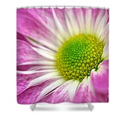Pink Hope Shower Curtain