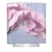Pink Hydrangea Flower Macro Shower Curtain