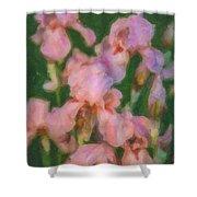 Pink Iris Family Shower Curtain