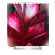 Pink Journey Impasto Shower Curtain