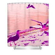 When Seagulls Are Living The Pink Life  Shower Curtain