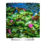 Pink Lilly Flowers And Pads Shower Curtain