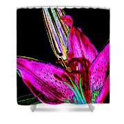 Pink Lily And Bud Pop Art Shower Curtain