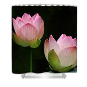 Pink Lotus Duet Shower Curtain
